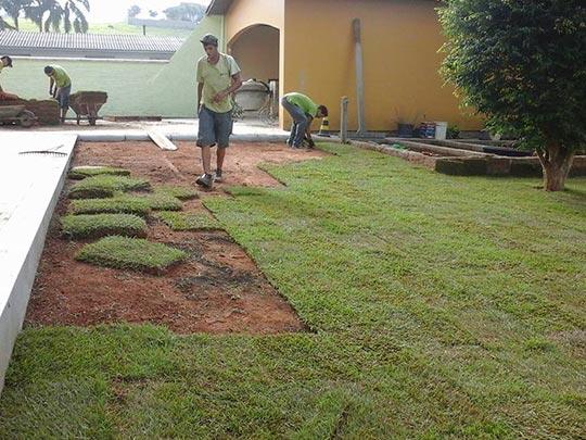 plantacao-de-grama-mc-tecnica-verde